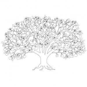 Voici un coloriage de pommier à imprimer gratuitement. Un dessin à imprimer sur le thème de l'automne et de la nature. Modèle 01