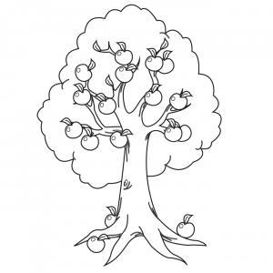 Voici un coloriage de pommier à imprimer gratuitement. Un dessin à imprimer sur le thème de l'automne et de la nature. Modèle 02