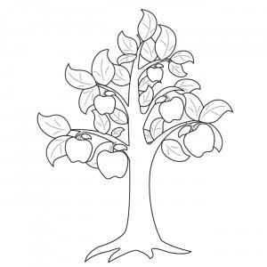 Voici un coloriage de pommier à imprimer gratuitement. Un dessin à imprimer sur le thème de l'automne et de la nature. Modèle 03