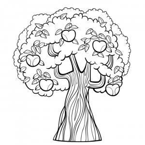 Voici un coloriage de pommier à imprimer gratuitement. Un dessin à imprimer sur le thème de l'automne et de la nature. Modèle 05