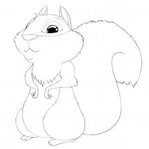 Voici un coloriage écureuil à imprimer gratuitement. Un dessin d'écureuil à imprimer pour tous les petits amoureux des animaux de la forêt. Page 08