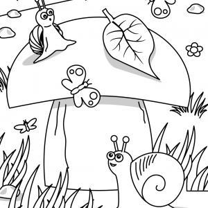Voici un coloriage d'escargot à imprimer gratuitement. Un dessin d'escargot à imprimer pour tous les petits amoureux des animaux. Page 02