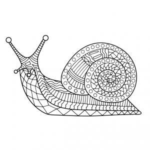 Voici un coloriage d'escargot à imprimer gratuitement. Un dessin d'escargot à imprimer pour tous les petits amoureux des animaux. Page 08