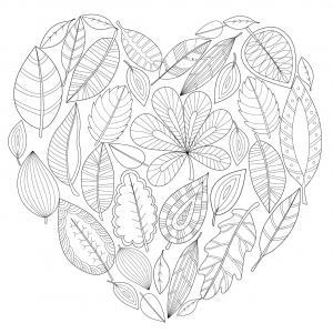 Voici un coloriage de feuilles d'arbre à imprimer gratuitement. Un dessin de feuilles à imprimer pour tous les petits amoureux des arbres et de la nature. Page 05