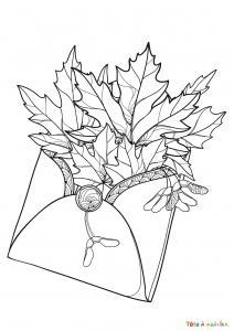 Voici un coloriage de feuilles d'arbre à imprimer gratuitement. Un dessin de feuilles à imprimer pour tous les petits amoureux des arbres et de la nature. Page 10