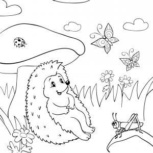 Voici un coloriage de hérisson à imprimer gratuitement. Un dessin de hérisson à imprimer pour tous les petits amoureux des animaux. Page 04