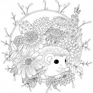 Voici un coloriage de hérisson à imprimer gratuitement. Un dessin de hérisson à imprimer pour tous les petits amoureux des animaux. Page 06
