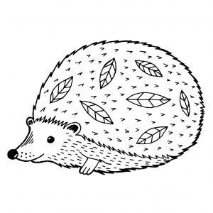 Voici un coloriage de hérisson à imprimer gratuitement. Un dessin de hérisson à imprimer pour tous les petits amoureux des animaux. Page 09