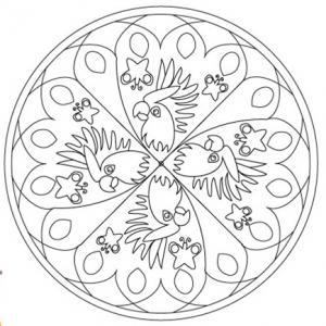 Mandala aux motifs de  perroquet pour un coloriage riche en couleur. Un mandala à imprimer gratuitement