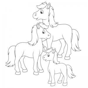Coloriage poney : voici un dessin à imprimer avec un petit poney. Un coloriage à imprimer sur le thème des poneys - Page 11