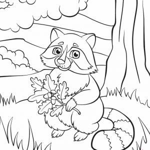 Voici un coloriage de raton laveur à imprimer gratuitement. Un dessin de raton à imprimer pour tous les petits amoureux des animaux. Page 05
