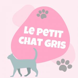 """La comptine """"un petit chat gris"""" est une comptine sur les mots et les sons. Une petite comptine enfantine pour s'amuser des mots avec votre enfant. Une comptine pour enrichir son vocabulaire sur les mots en """"i"""" et commencer &agrave"""
