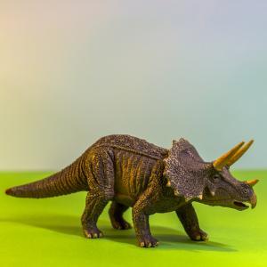 dinosaure - mot du glossaire Tête à modeler. Définition et activités associées au mot dinosaure.