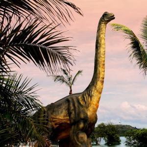 diplodocus - mot du glossaire Tête à modeler. Définition et activités associées au mot diplodocus.