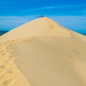 dune - mot du glossaire Tête à modeler. Définition et activités associées au mot dune.