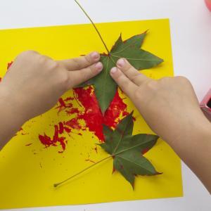 Réalisation d'un tableau de peinture fait avec l'empreinte des feuilles d'automne ramassées lors de Fiche explicative et illustrée.