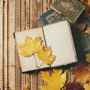 Technique pour faire sécher les feuilles d'automne. Elle pourront Ítre utilisées pour les bricolages ou les loisirs créatifs.