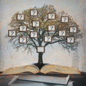 généalogie - mot du glossaire Tête à modeler. Définition et activités associées au mot généalogie.