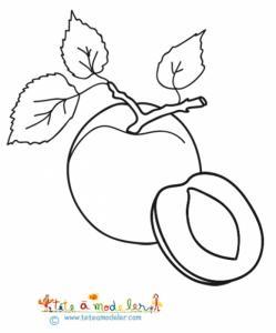 Coloriage de deux abricots