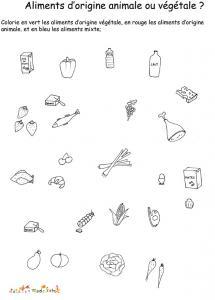 Imprimer la fiche sur les différentes sortes d'aliments