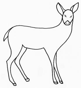 coloriage mammifère : la biche