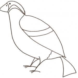 coloriage d'un bouvreuil