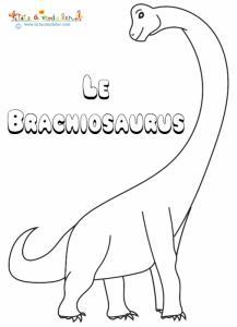Le brachiosaurus, un dinosaure à colorier