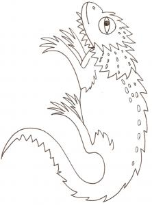 coloriage d'un cameleon - dessin 1