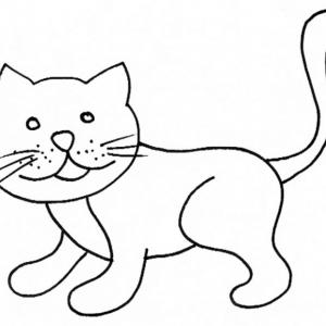 coloriage d'un chat 8