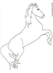 Coloriage d'un cheval dressé dessin 23