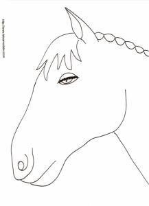 Coloriage d'une téte de cheval