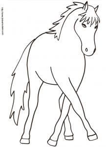 Coloriage d'un cheval de face