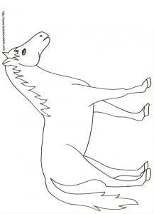 Coloriage d'un cheval dessin 20