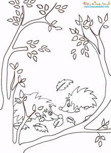 Coloriage d'un paysage d'automne