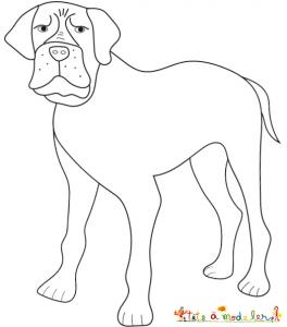 Coloriage d'un bouledogue