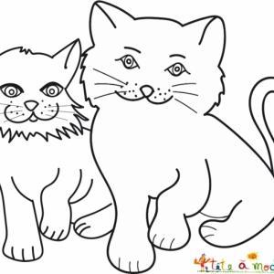 Coloriage de deux copains chats