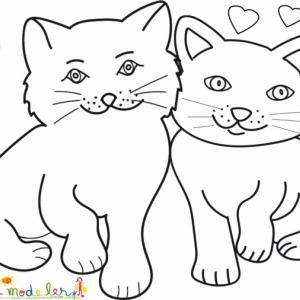 Coloriage des chats amoureux