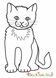 Dessin d'un chat européen