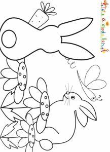 Deux lapins dans le jardin au printemps