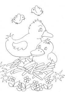 Coloriage des bébés canards
