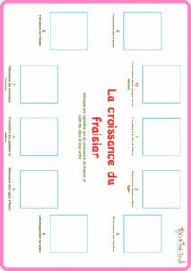 Planche de jeu cycle de vie du fraisier niveau 2