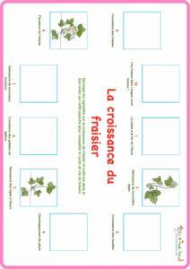 Planche de jeu niveau 1 du fraisier