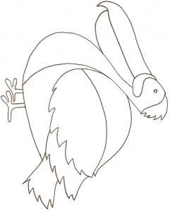 Coloriage dodo