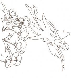 Dessin de coloriage d'une fée sur les anémones, un coloriage à imprimer pour jouer avec les fées
