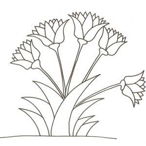 Coloriages Sur Les Fleurs Pour Enfant