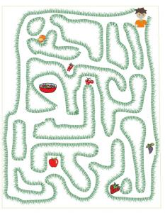 LABYRINTHE : la salade de fruits