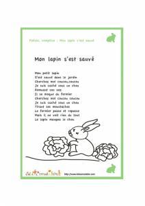 Mon lapin s'est sauvé