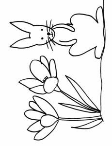 coloriage d'un lapin assis dans les crocus