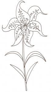coloriage d'une fleur de lys