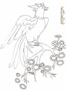 Coloriage oiseau a crete